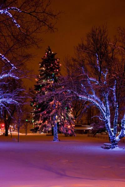 Photograph - Lightscape by Michael Smith-Sardior