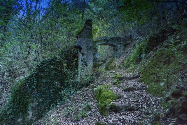 Photograph - Ligurian Jungle Covering Up Old Mill Valley Entrance Arch Ruins by Enrico Pelos