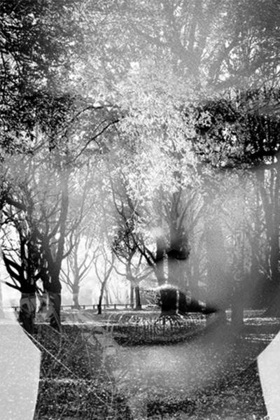 Wall Art - Photograph - Like A Forest  2 by Bojan Jevtic