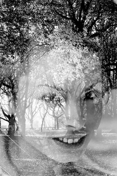Wall Art - Photograph - Like A Forest 4  by Bojan Jevtic