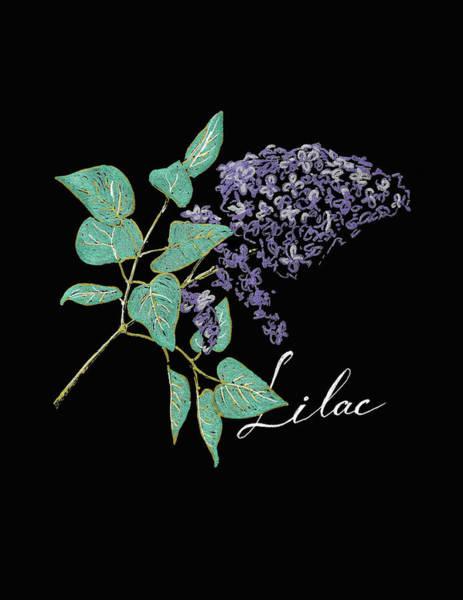 Blooming Tree Drawing - Lilac Branch by Masha Batkova