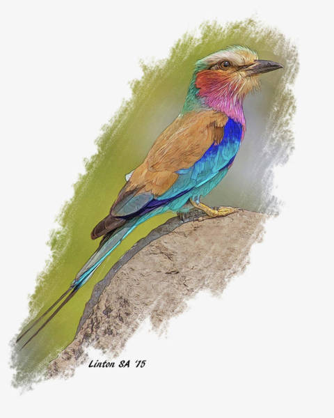 Digital Art - Lilac-breasted Roller by Larry Linton