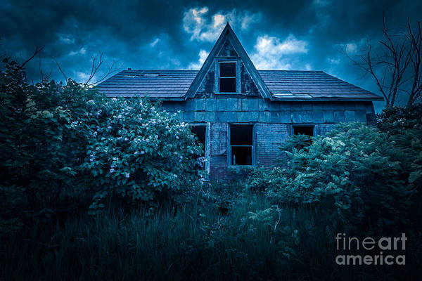 Photograph - Lilac House by Roger Monahan