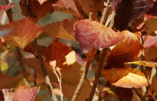 Lilac Leaves 36 Art Print