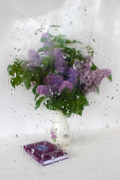 Photograph - Lilac Poems. Behind The Rainy Window by Victor Kovchin
