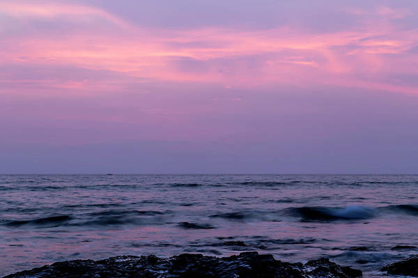 Wall Art - Photograph - Lilac Twilight by Georgia Fowler