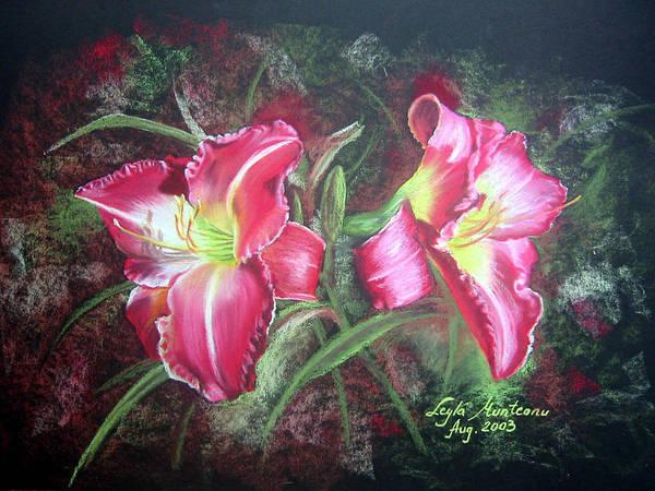 Wall Art - Drawing - Lilies #2 by Leyla Munteanu