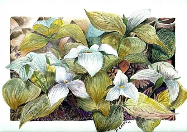 Painting - Lillies by Darren Cannell