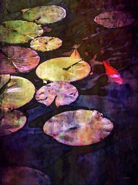 Photograph - Lilly Pads And Koi 2578 Idp_22 by Steven Ward