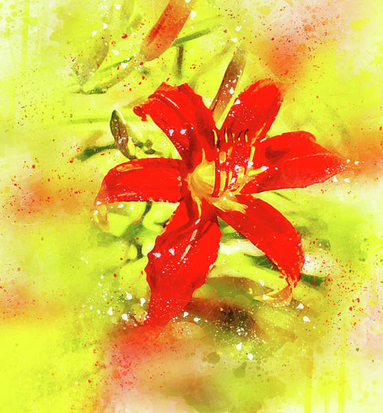 Photograph - Embellished Lily by Kay Brewer