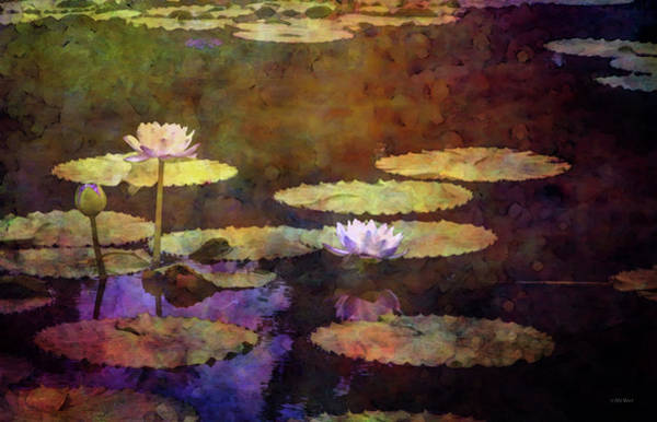 Photograph - Lily Pond Impression 4442 Idp_2 by Steven Ward