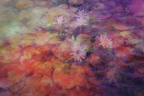 Photograph - Lily Pond Lost Impression 4733 Ldp_2 by Steven Ward