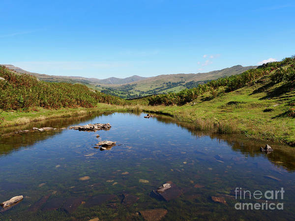 Wall Art - Photograph - Lily Tarn On Loughrigg Fell Lake District by Louise Heusinkveld