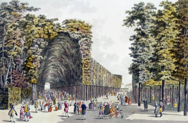 Park Avenue Wall Art - Drawing - Limegrove Walk, Augarten, Vienna, 1790s by Johann Ziegler