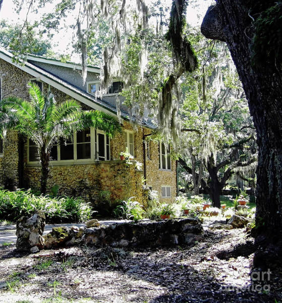 Photograph - Limestone Home In The Trees by D Hackett