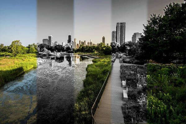 Photograph - Lincoln Park Time Slice Chicago Skyline by Sven Brogren