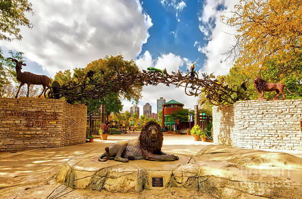 Photograph - Lincoln Park Zoo  East Entrance  Fall  by Tom Jelen