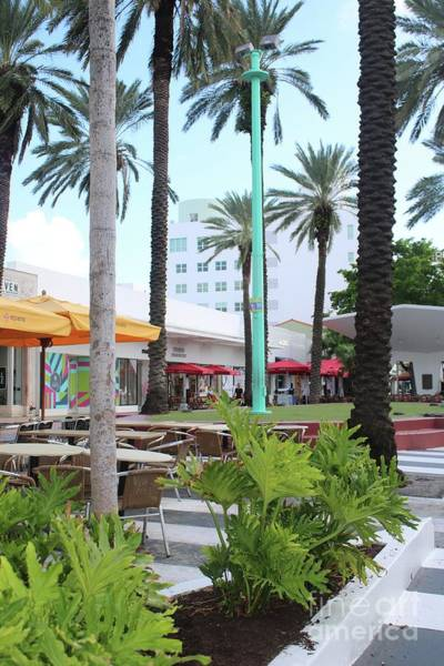 Photograph - Lincoln Road With Palm Trees by Carol Groenen
