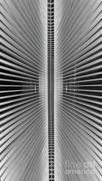 Oculus Wall Art - Photograph - Line Of Symmetry Bw by Michael Ver Sprill