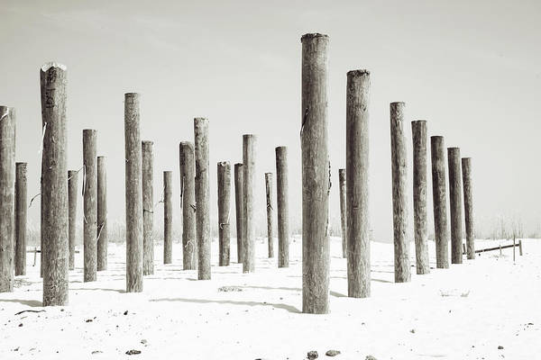 Wall Art - Photograph - Linear Beach Formation Number Two by Toni Hopper