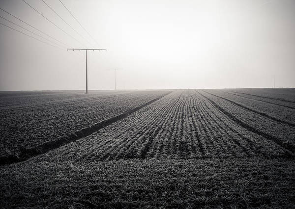 Photograph - Linear by Miguel Winterpacht
