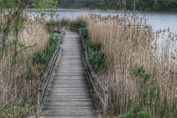 Photograph - 3012 - Linear Park Bridge In Lapeer II by Sheryl Sutter