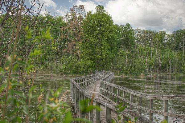 Photograph - 3003 - Linear Park Bridge In Lapeer by Sheryl Sutter