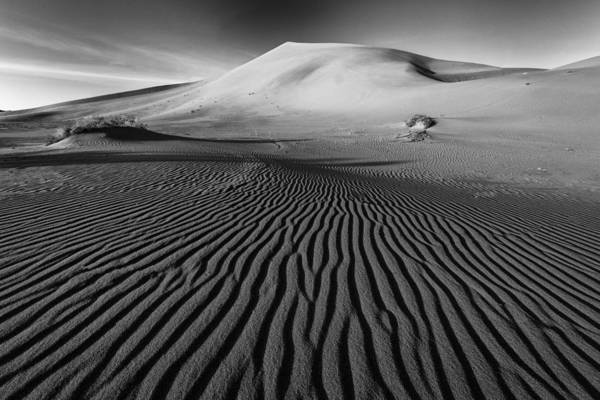 Wall Art - Photograph - Lines In The Sand by Mike Lang