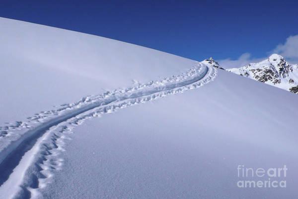 Ski Tracks Wall Art - Photograph - The Powder Trail by DiFigiano Photography