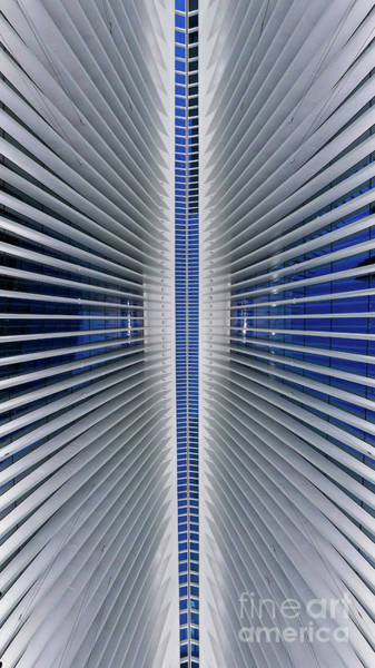 Oculus Wall Art - Photograph - Lines Of Symmetry  by Michael Ver Sprill