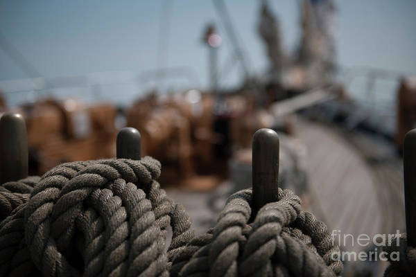 Photograph - Lines Over The Bow by Dale Powell