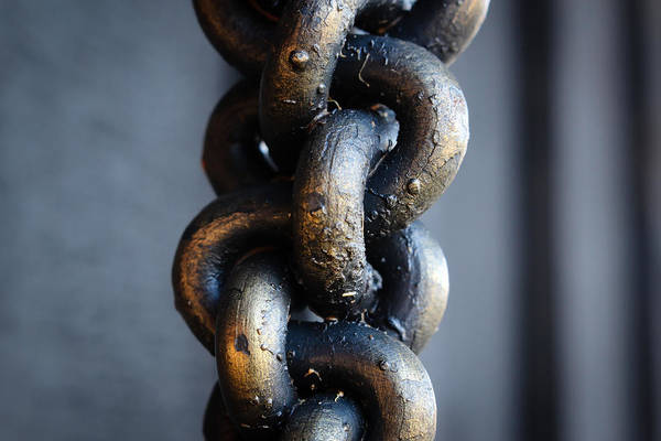 Chain Link Photograph - Linked by Marnie Patchett