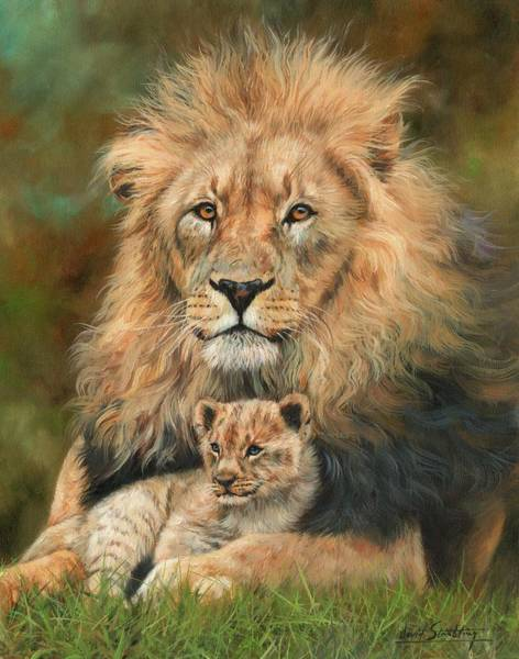 Wall Art - Painting - Lion And Cub by David Stribbling