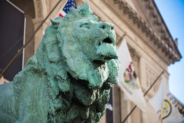 Lion Statue Wall Art - Photograph - Lion Art Institute by Steve Gadomski