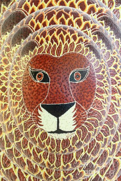 Photograph - Lion by E B Schmidt