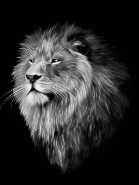 Big Cat Digital Art - Lion Fractal  by Julie L Hoddinott