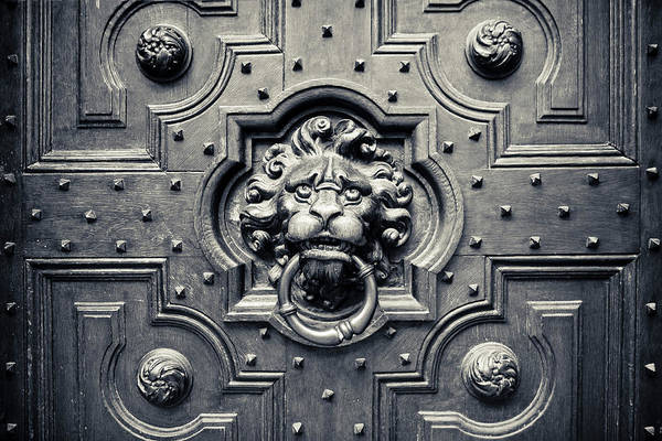 Photograph - Lion Head Door Knocker by Adam Romanowicz