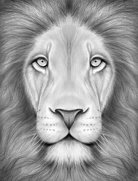 Flag Drawing - Lion Head by Greg Joens