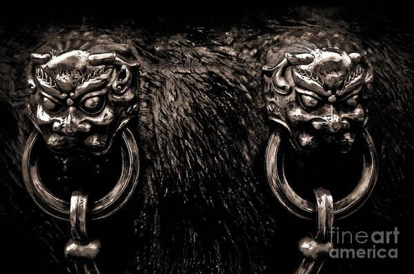 Wall Art - Photograph - Lion Head Handle by Venetta Archer