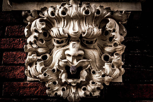 Photograph - Lion Head by Kenny Thomas