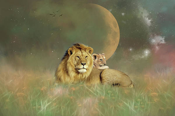 Photograph - Lion In The Grass by Ericamaxine Price
