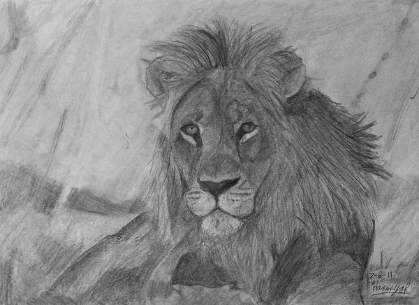 Furry Drawing - Lion King Always Ready by Hanunyah Fish