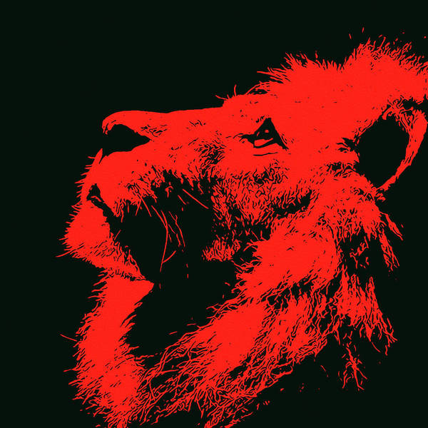 Painting - Lion, King Of Nature - Red Portrait by Andrea Mazzocchetti