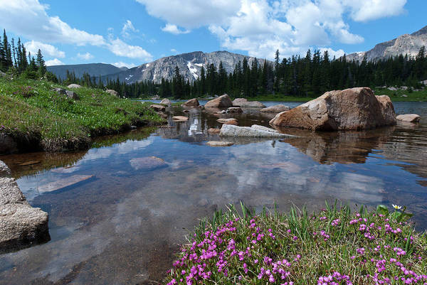 Photograph - Lion Lake At Water's Edge by Cascade Colors