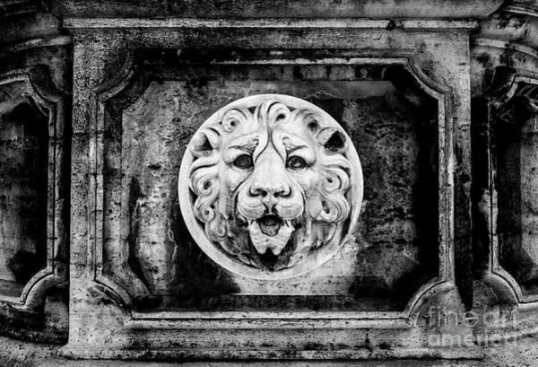 Wall Art - Photograph - Lion Of Rome by Jason Knott