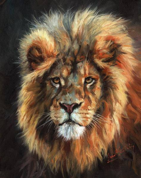 Painting - Lion Portrait 111 by David Stribbling