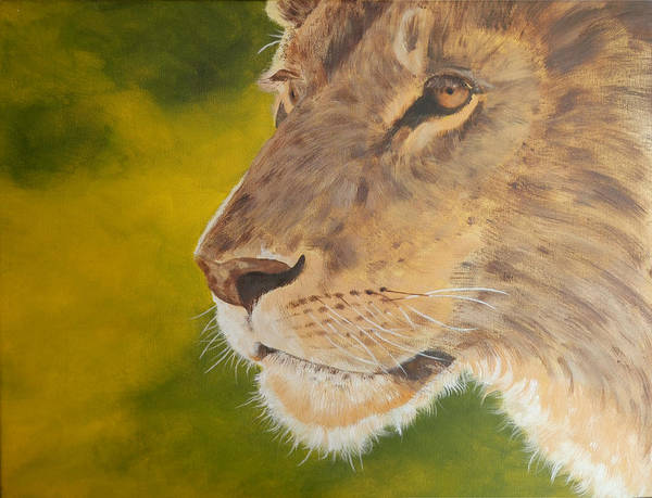 Painting - Lion Portrait by John Neeve