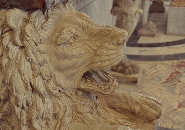 Photograph - Lion Roar by JAMART Photography