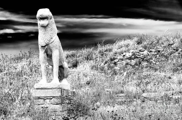 Photograph - Lion Ruins On The Island Of Delos by John Rizzuto