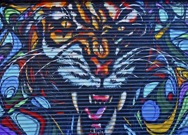 Photograph - Lion Street Art Brooklyn by Joan Reese